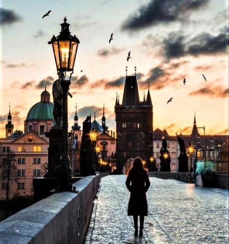 tramonto sul ponte di Praga con uccelli