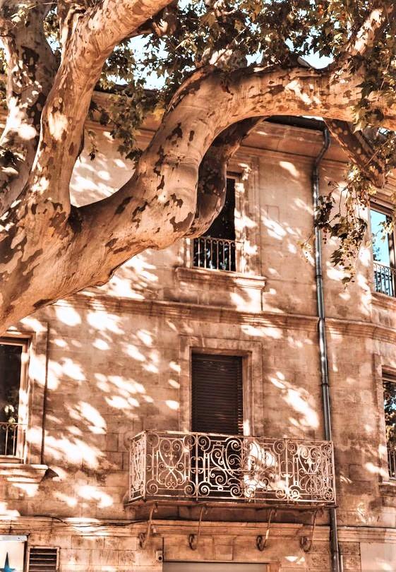scorcio di un palazzo di Avignone al tramonto