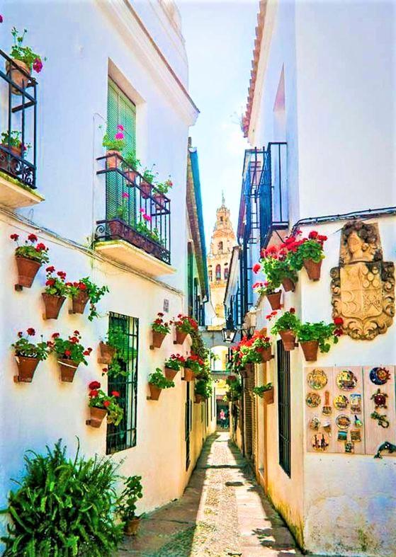 stradina ricca di fiori dell'Andalusia